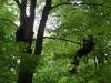 baumklettern-geocaching-08