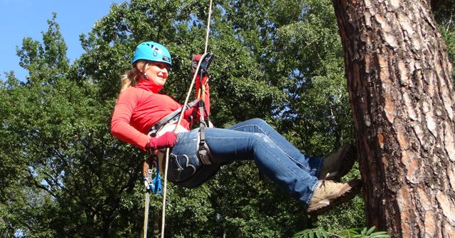 Kletterausrüstung T5 : Baumklettern für geocaching individuelle t5 kletterkurse in berlin