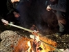 survival-ueberlebenstraining-bushcrafting-berlin-brandenburg-11